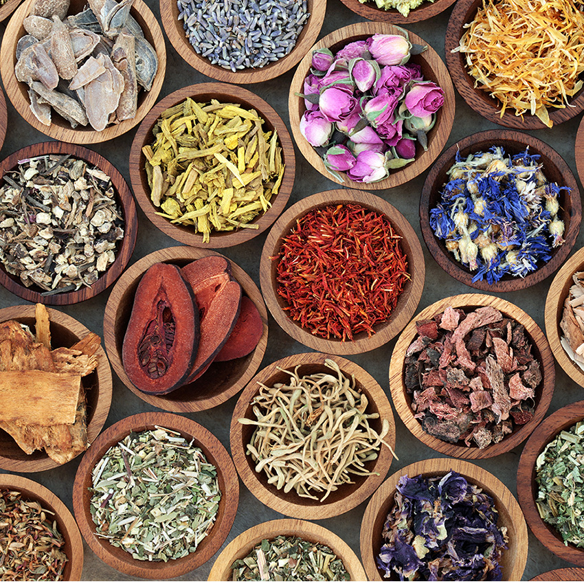 Herbal Medicine Selection